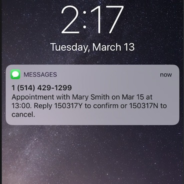 Example of a GOrendezvous appointment notification text message